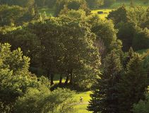 Foto de Condos Cité Nature Montréal